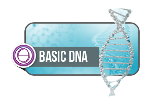 ThetaHealing® Basic DNA 1 + 2