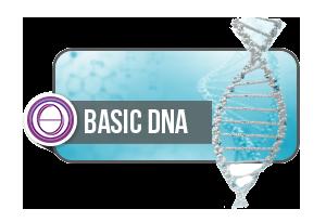 ThetaHealing® Basic DNA 1+2 Seminar - Online